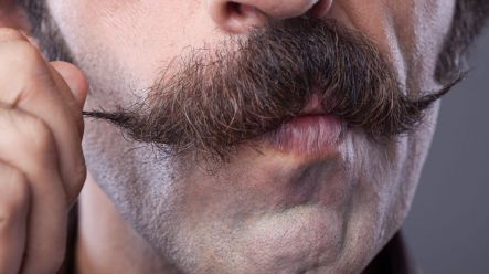 Will you join our Movember team?